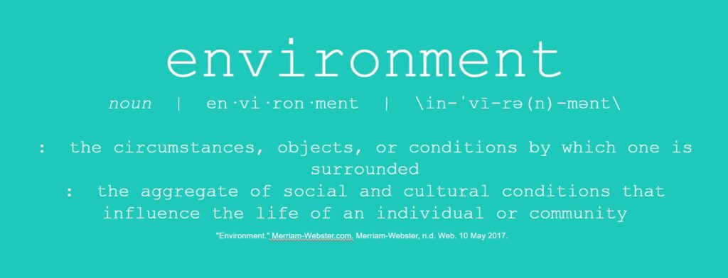 Environment: noun: 1) the circumstances, objects, or conditions by which one is surrounded; 2) the aggregate of social and cultural conditions that influence the life of an individual or community